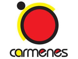 The CARMENES Consortium