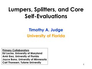 Lumpers, Splitters, and Core Self-Evaluations