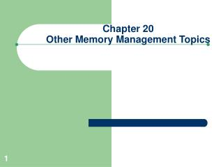 Chapter 20 Other Memory Management Topics