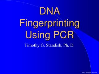 DNA Fingerprinting Using PCR