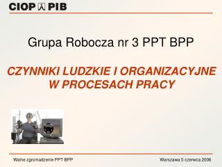 Grupa Robocza nr 3 PPT BPP CZYNNIKI LUDZKIE I ORGANIZACYJNE W PROCESACH PRACY