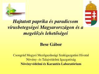 Hajtatott paprika és paradicsom vírusbetegségei Magyarországon és a megelőzés lehetőségei