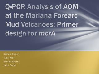 Q-PCR Analysis of AOM at the Mariana  Forearc  Mud Volcanoes: Primer design for  mcrA
