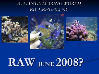 RAW  JUNE  2008?