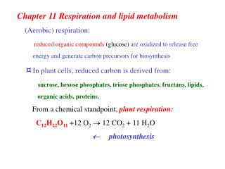 Chapter 11 Respiration and lipid metabolism (Aerobic) respiration: