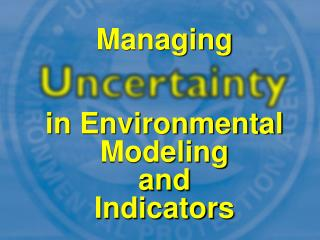in Environmental Modeling and Indicators