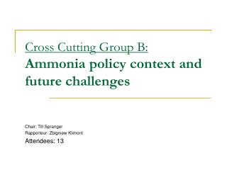 Cross Cutting Group B: Ammonia policy context and future challenges