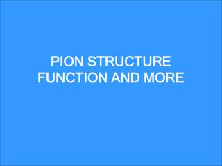 PION STRUCTURE FUNCTION AND MORE