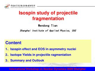 Isospin study of projectile fragmentation