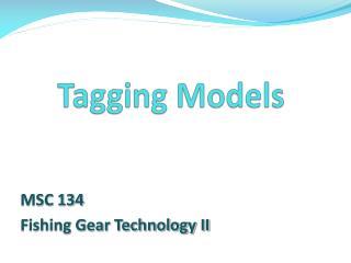 Tagging Models