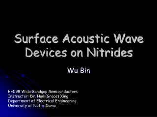 Surface Acoustic Wave Devices on Nitrides