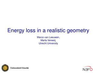 Energy loss in a realistic geometry