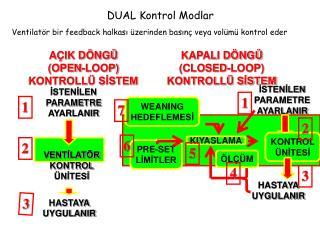 DUAL Kontrol Modlar