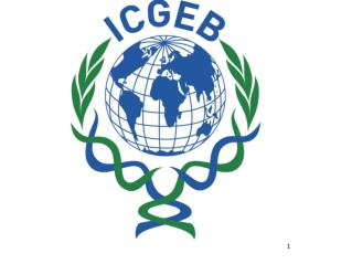 International Centre for Genetic Engineering and Biotechnology (ICGEB)