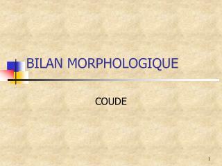 BILAN MORPHOLOGIQUE