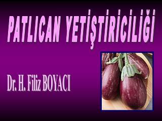 Dr. H. Filiz BOYACI