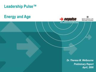 Leadership Pulse™ Energy and Age
