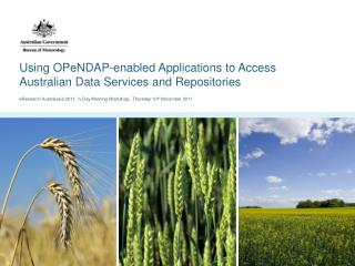 Using OPeNDAP-enabled Applications to Access Australian Data Services and Repositories