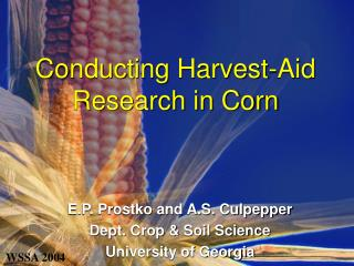 Conducting Harvest-Aid Research in Corn