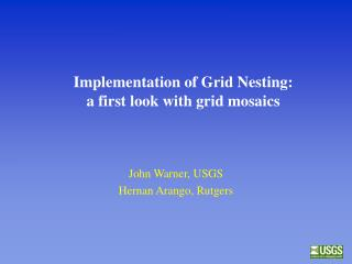 Implementation of Grid Nesting: a first look with grid mosaics