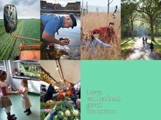 FAB randen Akkerranden Functionele Agrobiodiversiteit (FAB)
