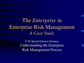 The  Enterprise  in  Enterprise Risk Management A Case Study
