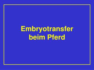 Embryotransfer  beim Pferd