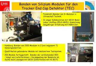 Bonden von Silizium Modulen für den Tracker End Cap Detektor (TEC)