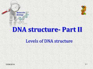 DNA structure- Part II