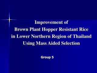 Improvement of  Brown Plant Hopper Resistant Rice  in Lower Northern Region of Thailand