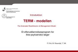 TERM - modellen