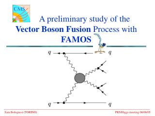 A preliminary study of the    Vector Boson Fusion  Process with  FAMOS