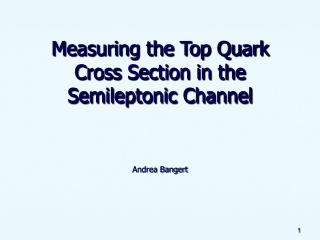 Measuring the Top Quark Cross Section in the Semileptonic Channel