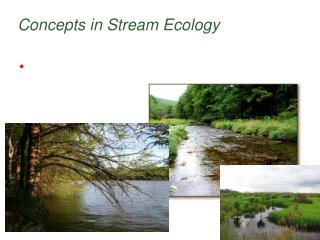 Concepts in Stream Ecology