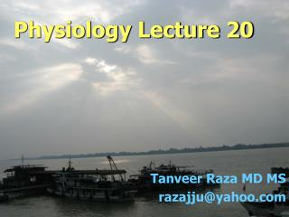 Physiology Lecture 20
