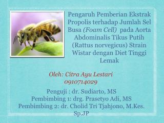 Oleh: Citra Ayu Lestari 0910714029