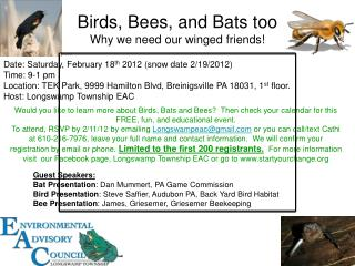 Birds, Bees, and Bats too Why we need our winged friends!