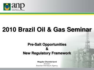 2010 Brazil Oil & Gas Seminar