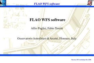 FLAO WFS software