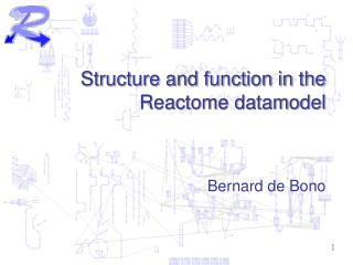 Structure and function in the Reactome datamodel