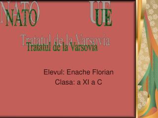 Elevul: Enache Florian Clasa: a XI a C