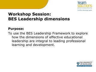 Workshop Session:  BES Leadership dimensions