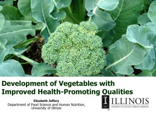 Development of Vegetables with Improved Health-Promoting Qualities