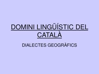 DOMINI LINGÜÍSTIC DEL CATALÀ