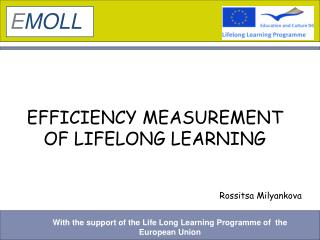 EFFICIENCY MEASUREMENT OF LIFELONG LEARNING