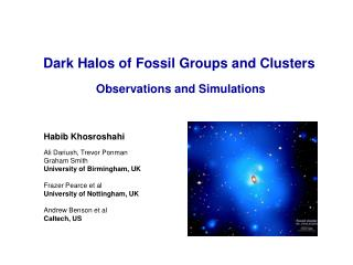 Dark Halos of Fossil Groups and Clusters