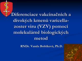 RNDr.  Vanda Bo štíková ,  Ph.D .