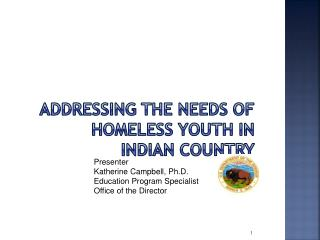 ADDRESSING THE NEEDS OF HOMELESS YOUTH IN INDIAN COUNTRY
