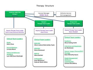Therapy  Structure