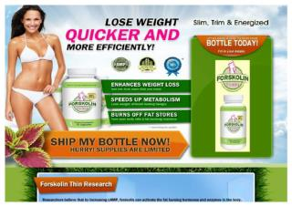 Forskolin Quickly Rising Within the Weight Loss Circles